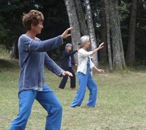 3 pratiquants avancées du Tai Chi