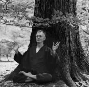 Vlady stévanovitch méditation