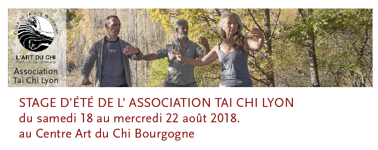 stage de Tai Chi Lyon au centre Art u Chi bourgogne